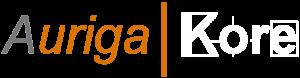 Auriga Networks